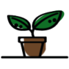 icon_ecologia-2